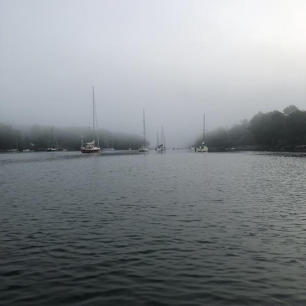 The Cove in Fog